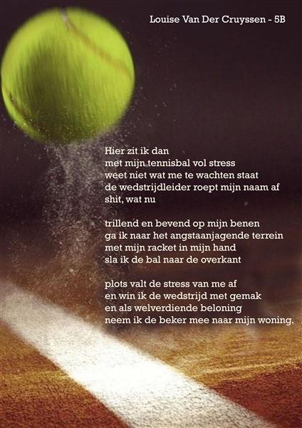 Louise Van Der Cruyssen 5B A3